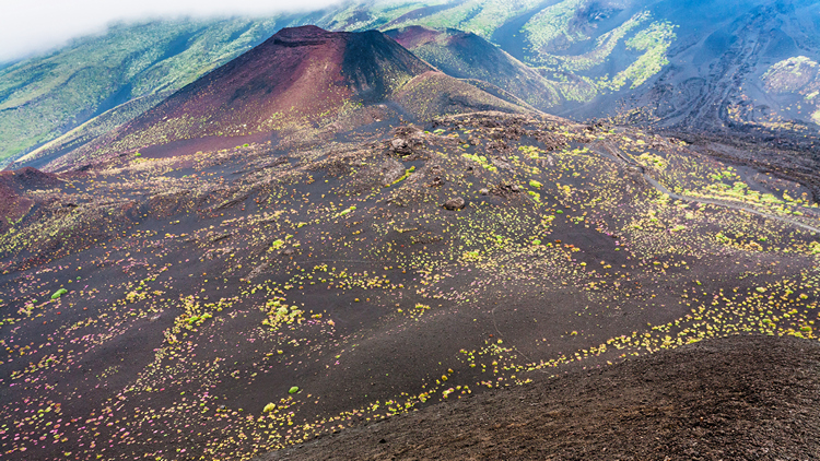 Provate l' Emozione di un' Escursione Guidata sul Monte Etna